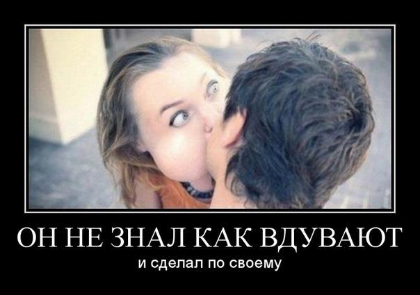 pristor.ru