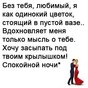 pozhelaniya-spokojnoj-nochi-lyubimomu-muzhchine-svoimi-slovami-6