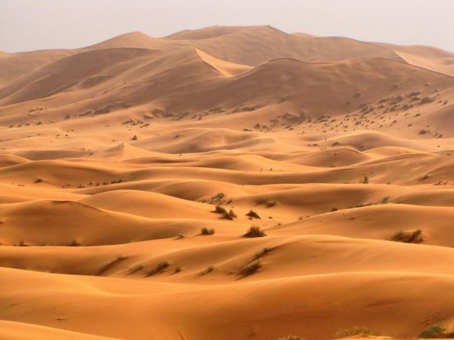 foto-pustyni-saxary-4