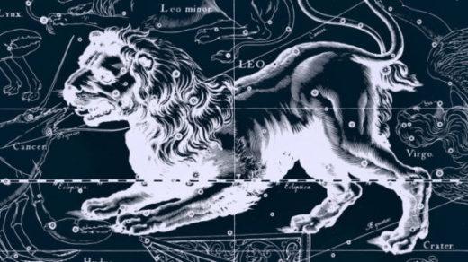 Год Петуха - гороскоп на 2017 год лев женщина и мужчина