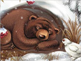 Медведь в берлоге картинки для детей - красивые и прикольные 8