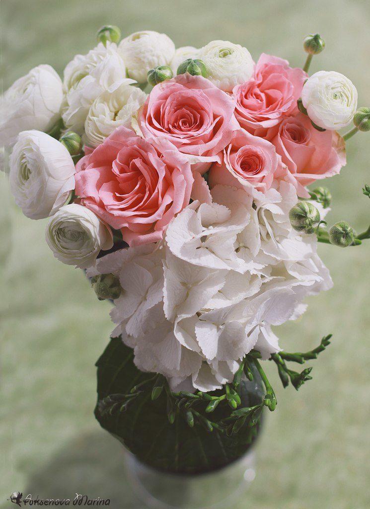 Скачать цветы, картинки - бесплатно 7