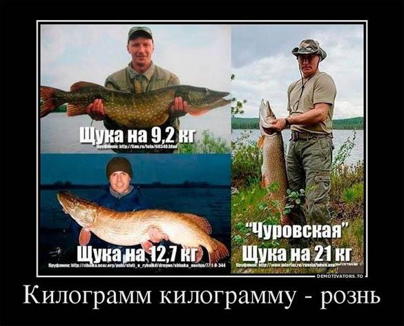 Смешные и прикольные картинки про рыбалку - смотреть бесплатно 1