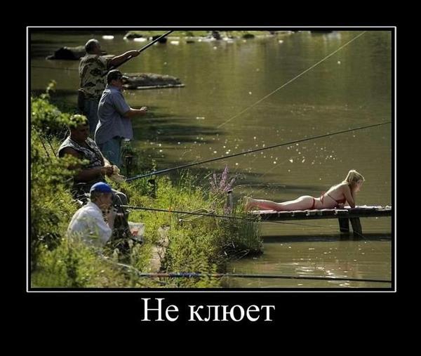 Смешные и прикольные картинки про рыбалку - смотреть бесплатно 6