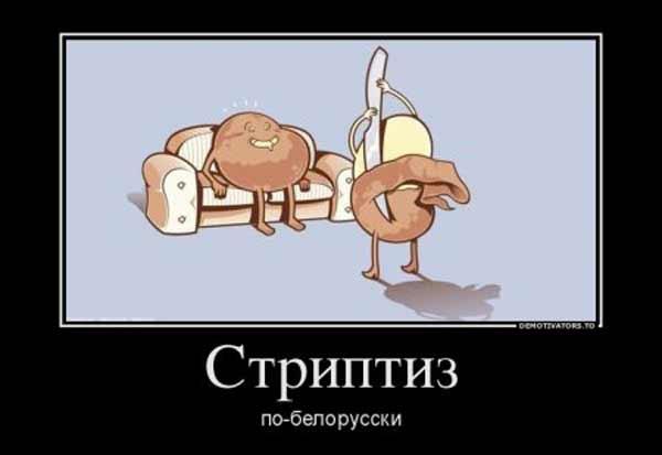 Смешные новогодние картинки 5