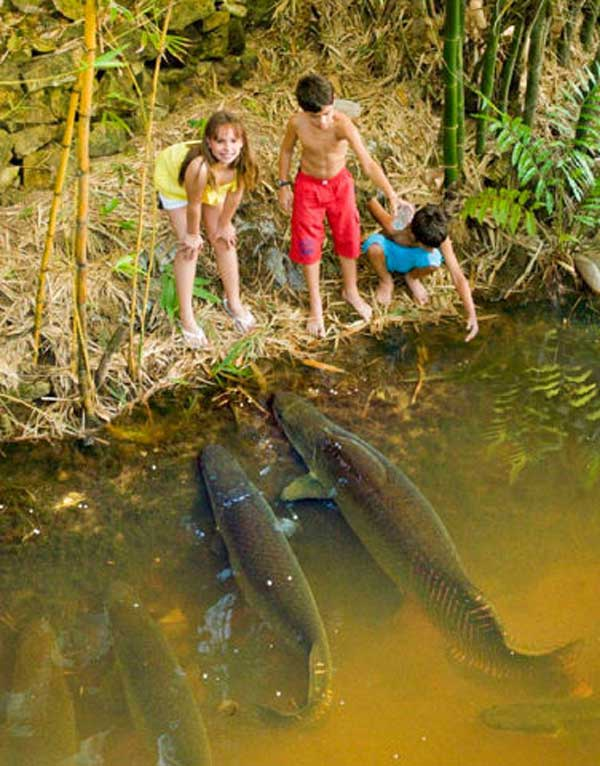 Фото приколы про рыбалку, смешные приколы на рыбалке - фото 12