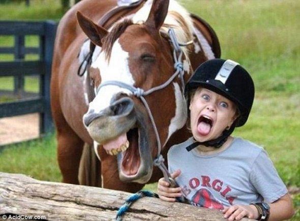 Фото приколы с животными до слез 18