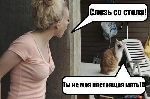 смешные фото приколы про женщин 10