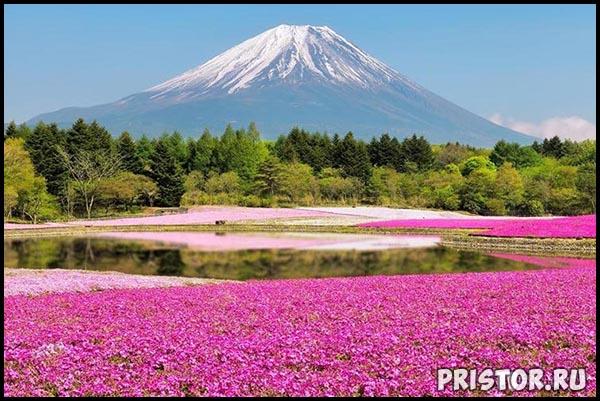 Природа фото - самые красивые места на Земле фото 3