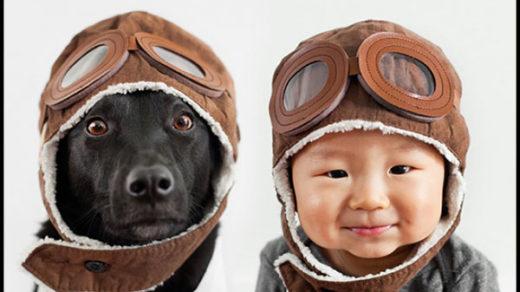 Интересные факты о собаках для детей