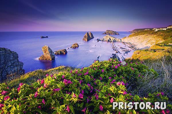 Фото лета, природа красивые фото и картинки лета 8