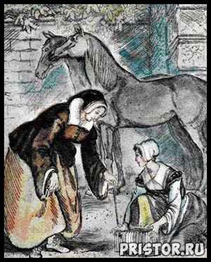 Сказка про Золушку - читать бесплатно, онлайн, текст 3