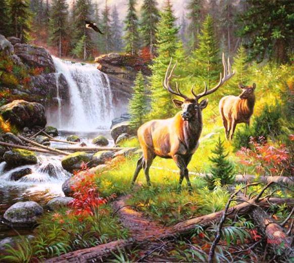 Берегите природу - картинки, фото, красивые, прикольные, интересные 4