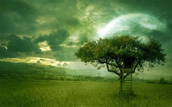 Берегите природу - картинки, фото, красивые, прикольные, интересные 5