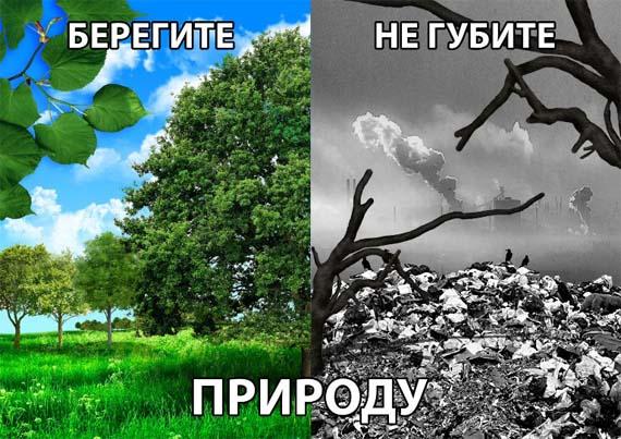 Картинки природа берегите