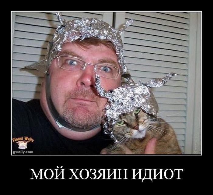 Демотиваторы про котов смешные, ржачные демотиваторы с котами 2