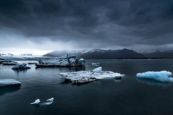 Живая природа зимой - фото красивые, удивительные, интересные 10