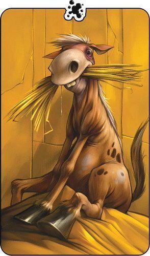 Забавные животные - картинки и фото, смешные животные - картинки 24
