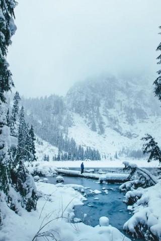 Зимние картинки на телефон - красивые, прикольные скачать бесплатно 15