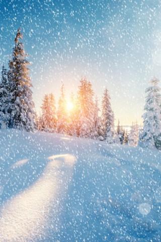 Зимние картинки на телефон - красивые, прикольные скачать бесплатно 20
