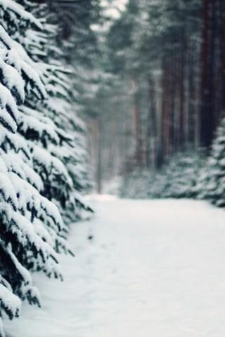 Зимние картинки на телефон - красивые, прикольные скачать бесплатно 4