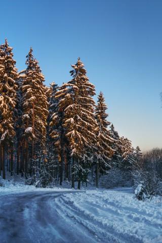 Зимние картинки на телефон - красивые, прикольные скачать бесплатно 8