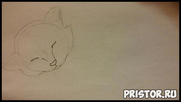 Как нарисовать котенка поэтапно карандашом - смотреть с фото 2