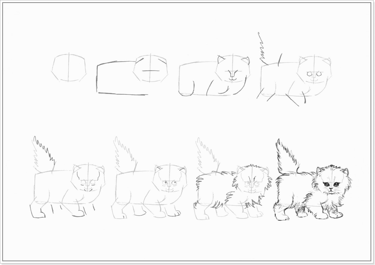 Как нарисовать котенка поэтапно карандашом - смотреть с фото 6