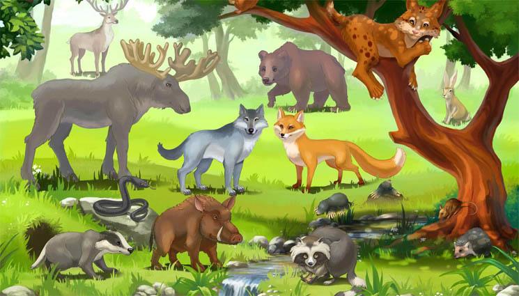 Картинки домашних животных для детского сада - красивые и прикольные 10