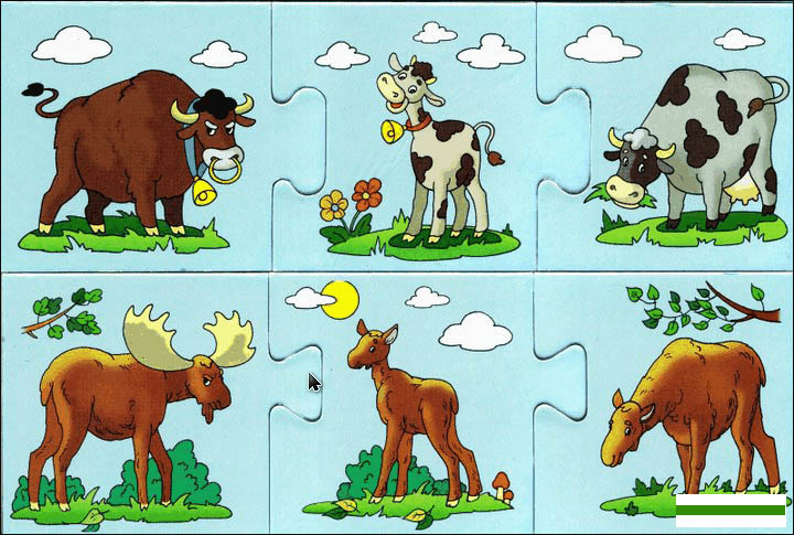 Картинки домашних животных для детского сада - красивые и прикольные 3