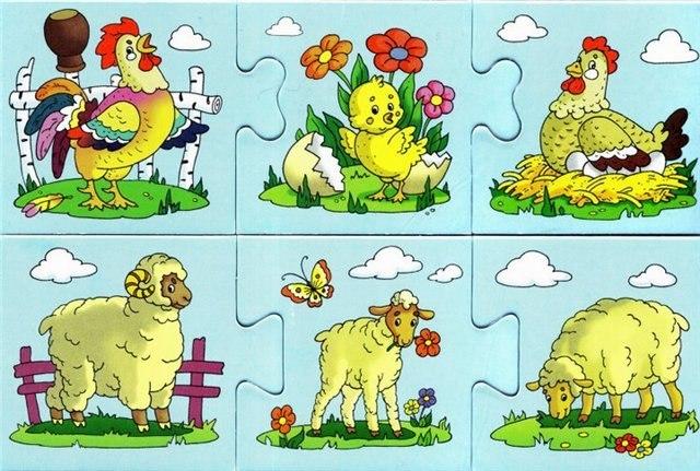 Картинки домашних животных для детского сада - красивые и прикольные 4