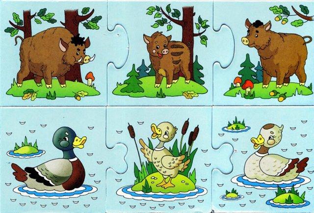 Картинки домашних животных для детского сада - красивые и прикольные 5