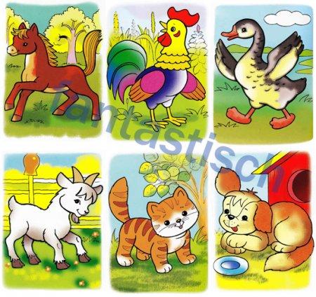 Картинки домашних животных для детского сада - красивые и прикольные 9