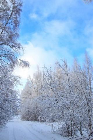 Картинки зима на телефон - красивые и прикольные скачать бесплатно 15
