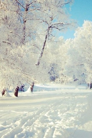 Картинки зима на телефон - красивые и прикольные скачать бесплатно 3