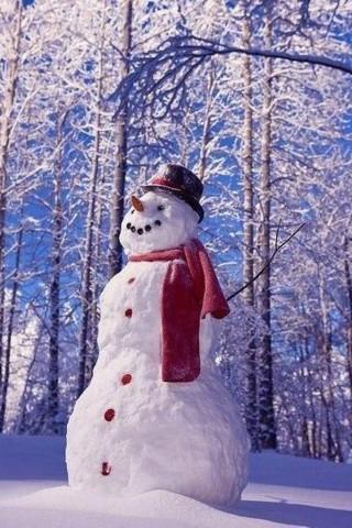 Картинки зима на телефон - красивые и прикольные скачать бесплатно 6