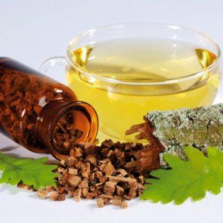 Кора дуба - лечебные свойства и противопоказания, применение 3