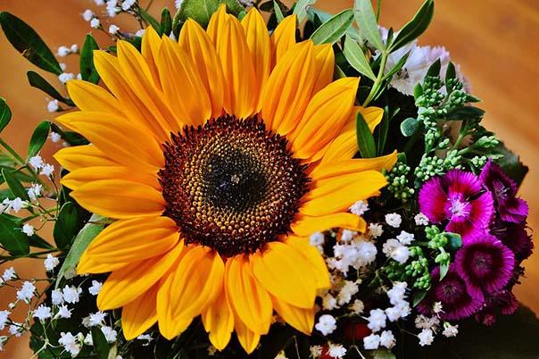 Красивые букеты из живых цветов - фото, картинки, удивительные 8