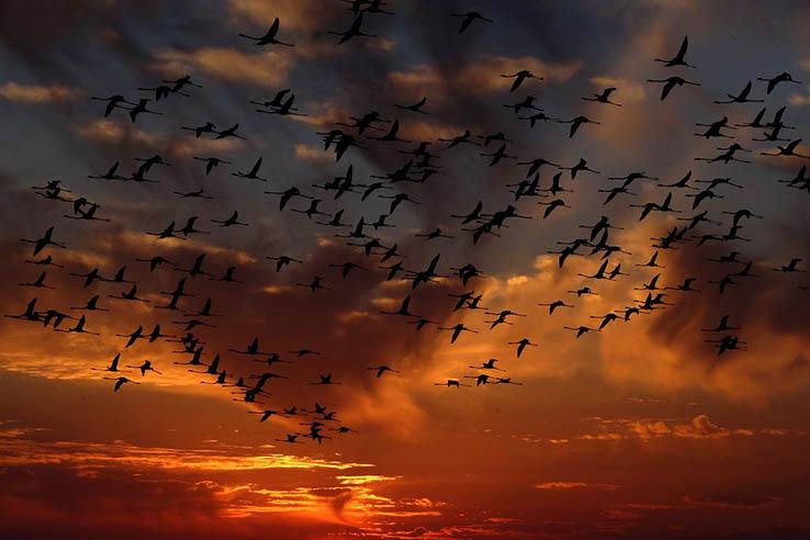 Красивые картинки природа, картинки природы фото и картинки 8
