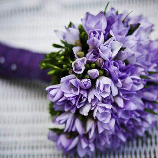 Красивые цветы фото и картинки - удивительные, прикольные 14
