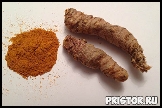 Куркума - полезные свойства и противопоказания, рецепты, применение 6