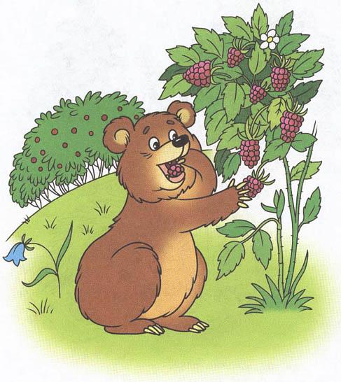 Медведь картинки для детей, медвежонок картинки для детей 3