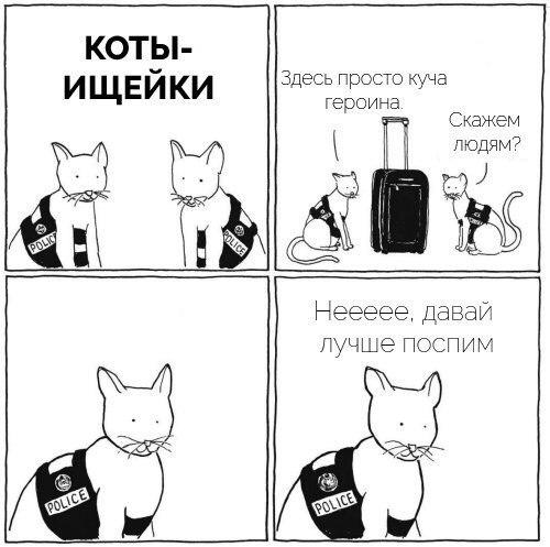 Прикольные и смешные комиксы про котов - смотреть бесплатно 3