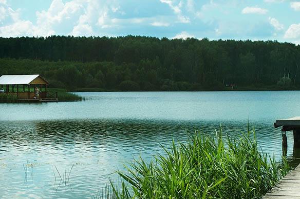 Русская природа картинки - красивые, удивительные, прикольные 10