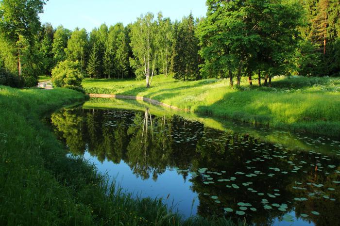 Русская природа картинки - красивые, удивительные, прикольные 6