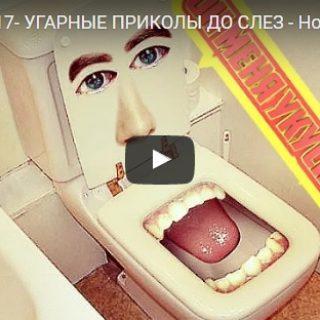 Скачать бесплатно короткие видео - смешные, прикольные, ржачные