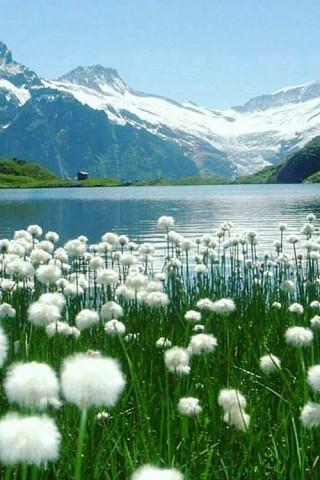 Скачать красивые картинки и фото на телефон - природа, пейзажи 19