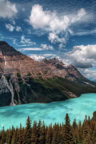 Скачать красивые картинки и фото на телефон - природа, пейзажи 24