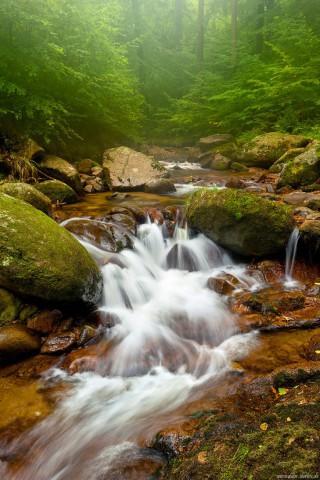 Скачать красивые картинки и фото на телефон - природа, пейзажи 6