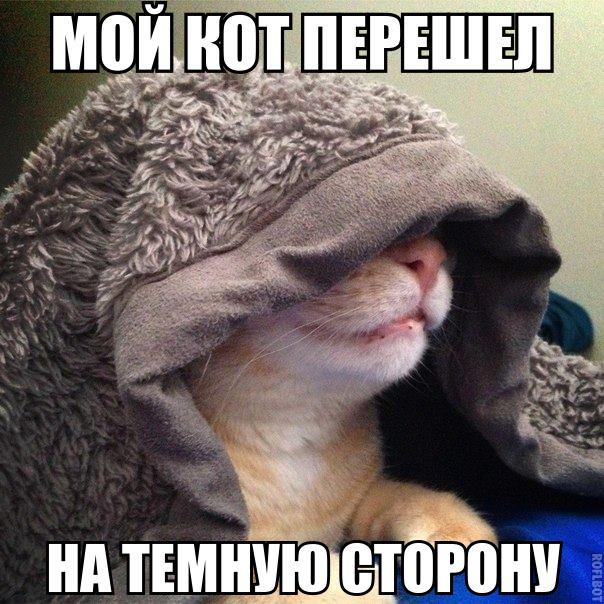 Смешные фото животных с надписями до слез - смотреть ржачные картинки 3